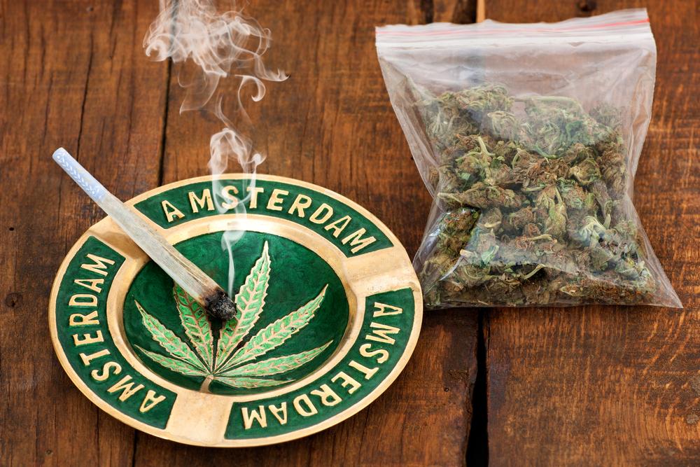Ολλανδία: Νομιμοποιήθηκε η καλλιέργεια μαριχουάνας