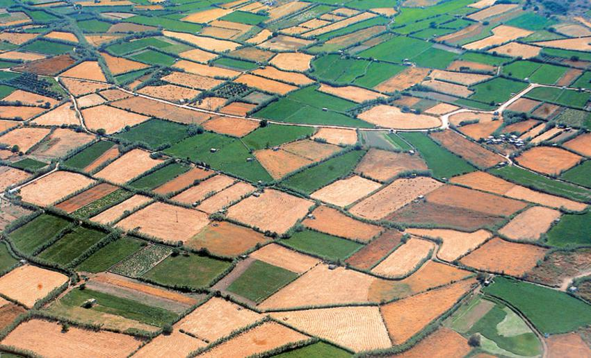 ΕΝΦΙΑ: Εξαιρούνται για ακόμη δύο χρόνια τα αγροτεμάχια