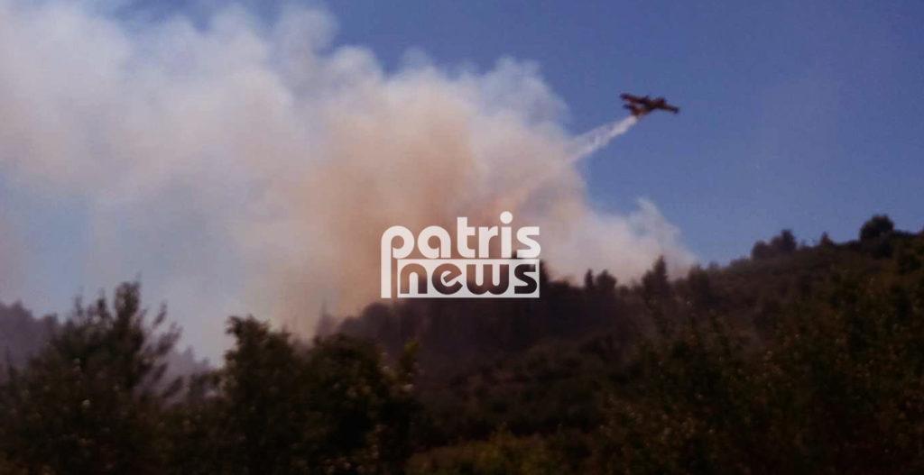 Μεγάλη πυρκαγιά στην Αλφειούσα κοντά στην Αρχαία Ολυμπία (Photos)