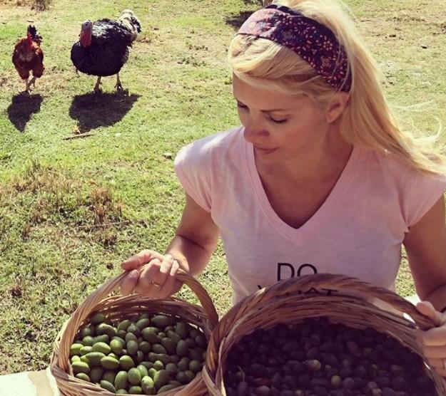 Η Μενεγάκη αγρότισσα, μαζεύει ελιές