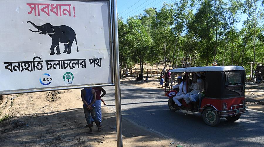Πρόσφυγες Ροχίνγκια ποδοπατήθηκαν μέχρι θανάτου από άγριους ελέφαντες  (Photo)