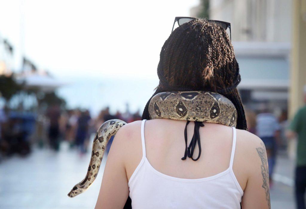 Έβγαλε βόλτα τον… βόα της στην πλατεία Αριστοτέλους! (Photos)