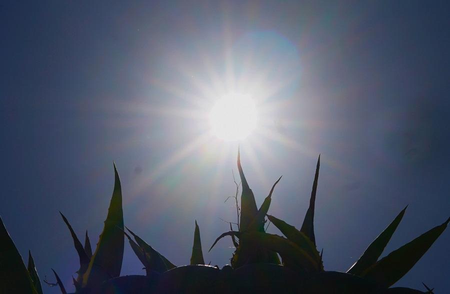 Το καλοκαίρι είναι εδώ: Στην Κρήτη ο υδράργυρος ξεπέρασε τους 32 βαθμούς