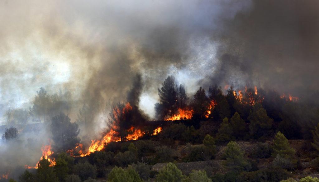 Φωτιά στο Καλαμίτσι Χαλκιδικής