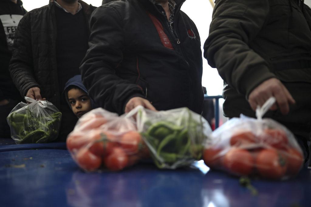Άνοστες ντομάτες: Το άγνωστο γονίδιο και το λάθος που κάνουμε όλοι με το ψυγείο
