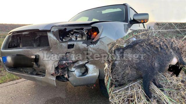 Σφοδρή σύγκρουση με τεράστιο αγριογούρουνο στη δυτική Φθιώτιδα (εικόνες)