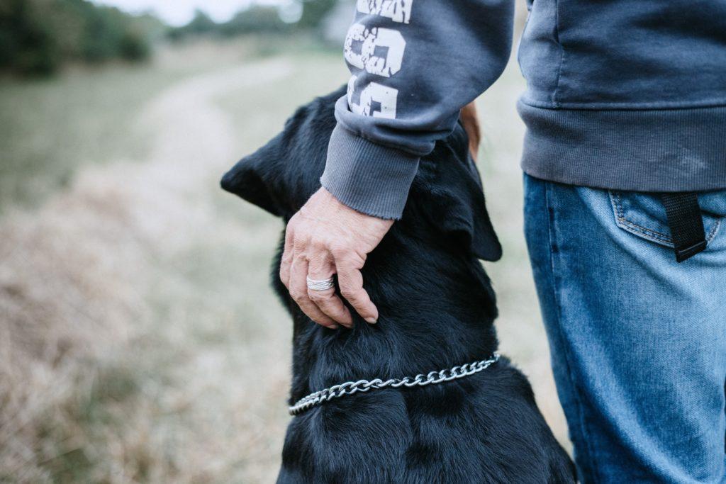 Επίθεση ροτβαιλερ στην Πέλλα: «Πέσαμε πάνω στον σκύλο για να τον σταματήσουμε» λέει η μητέρα της δίχρονης
