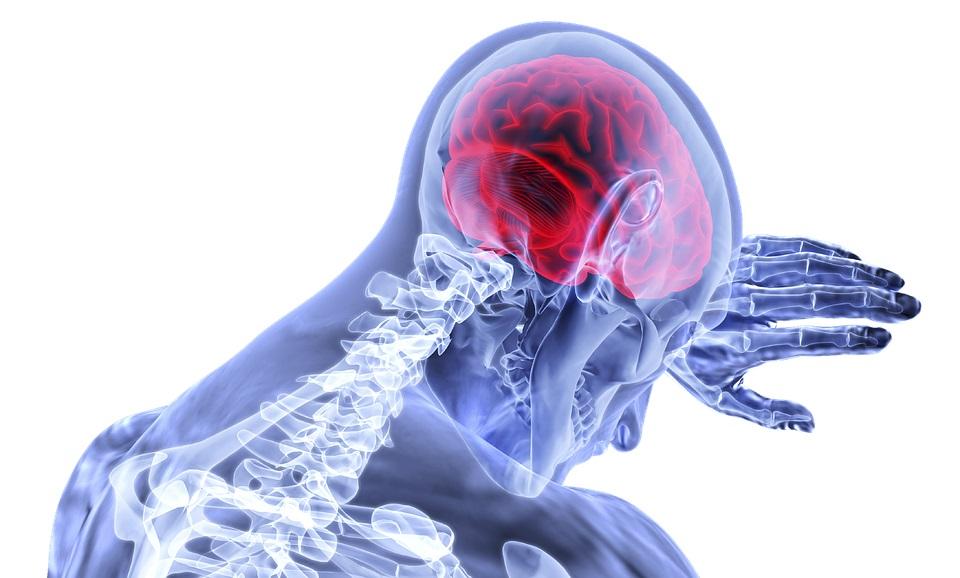 Σημαντική επιτυχία από Έλληνες επιστήμονες – Θεράπευσαν ένα βασικό σύμπτωμα της σχιζοφρένειας
