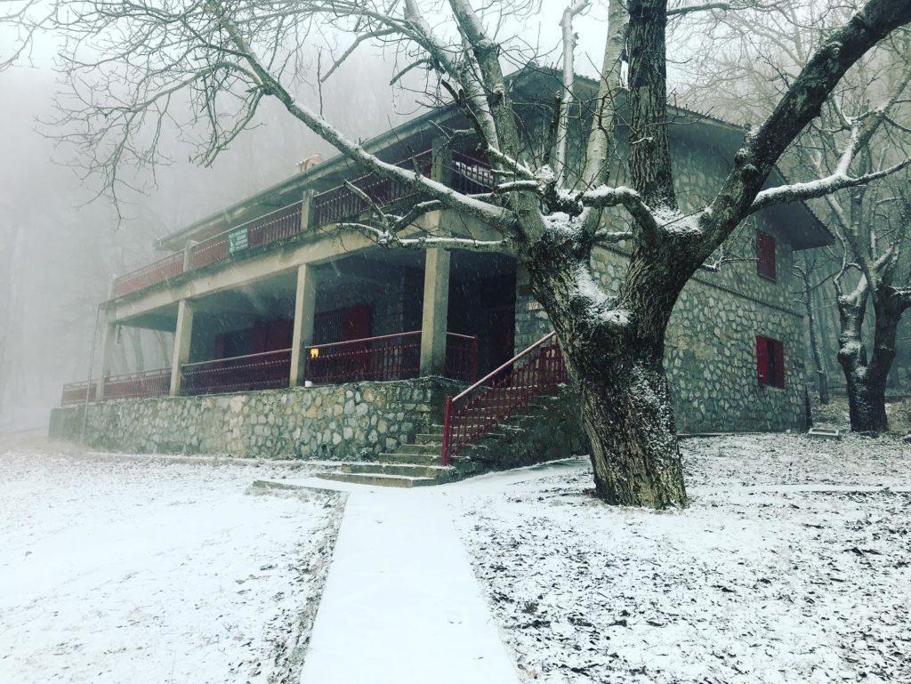 Θεσσαλονίκη: Πέπλο χιονιού στον Χορτιάτη με την έλευση του «Ηφαιστίωνα»