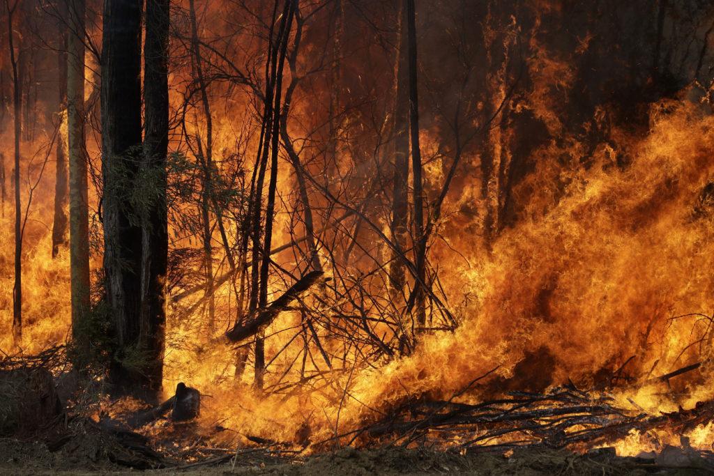 Φωτογραφία της NASA δείχνει το μέγεθος της καταστροφής στη Νήσο Καγκουρό από τις πυρκαγιές