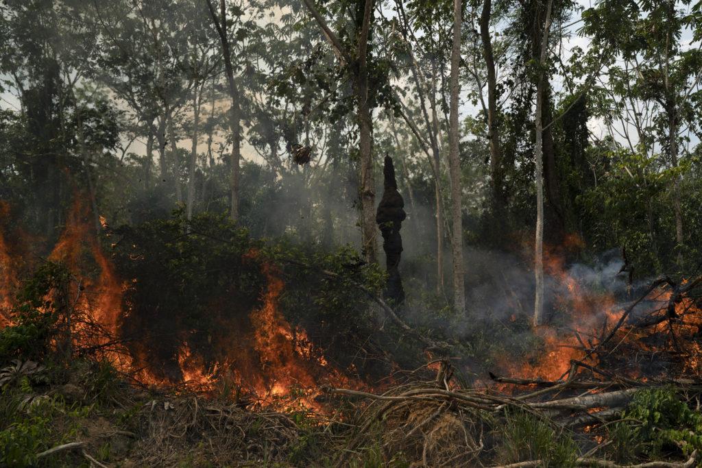 Οι πυρκαγιές στον Αμαζόνιο αυξήθηκαν κατά 30%