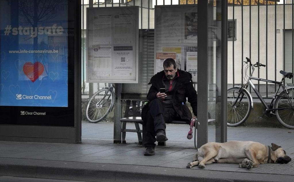Βέλγιο – Κορονοϊός: Αύξηση των υιοθεσιών κατοικιδίων σε καταφύγιο ζώων