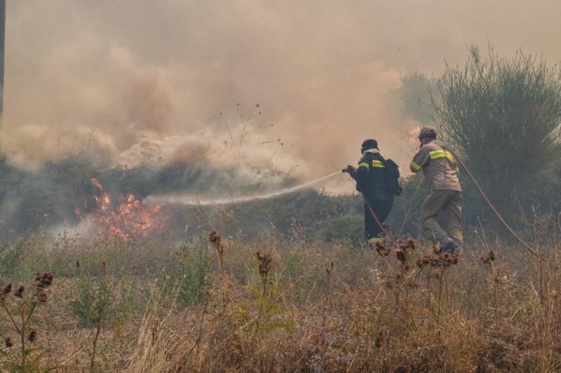 Ηλεία: Συνελήφθη άνδρας για τη φωτιά στο Γραμματικό – σε ύφεση τα μέτωπα στην Πελοπόννησο