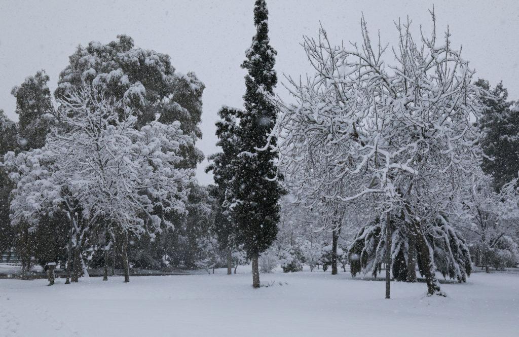Στους μείον 19,4 βαθμούς Κελσίου η ελάχιστη θερμοκρασία το πρωί στη Φλώρινα