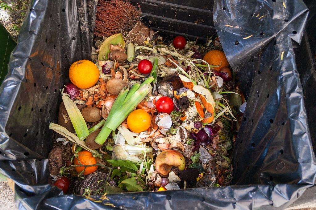 Έκθεση ΟΗΕ: Στα σκουπίδια σχεδόν 1 δισ. τόνοι τροφίμων ετησίως