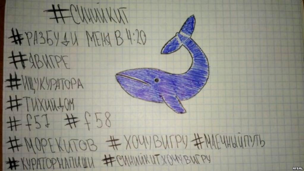 Ηράκλειο: Παρέμβαση της Εισαγγελίας για την «Μπλε Φάλαινα»