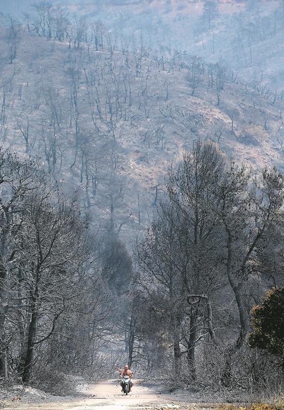 Το κράτος είναι ο μεγάλος  εμπρηστής των δασών