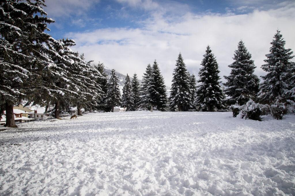 «Παγωμένα» Χριστούγεννα – Χιόνια και τσουχτερό κρύο σε όλη τη χώρα