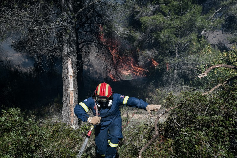 Φωτιά καίει δασική έκταση στην Κυανή Ακτή Ηλείας