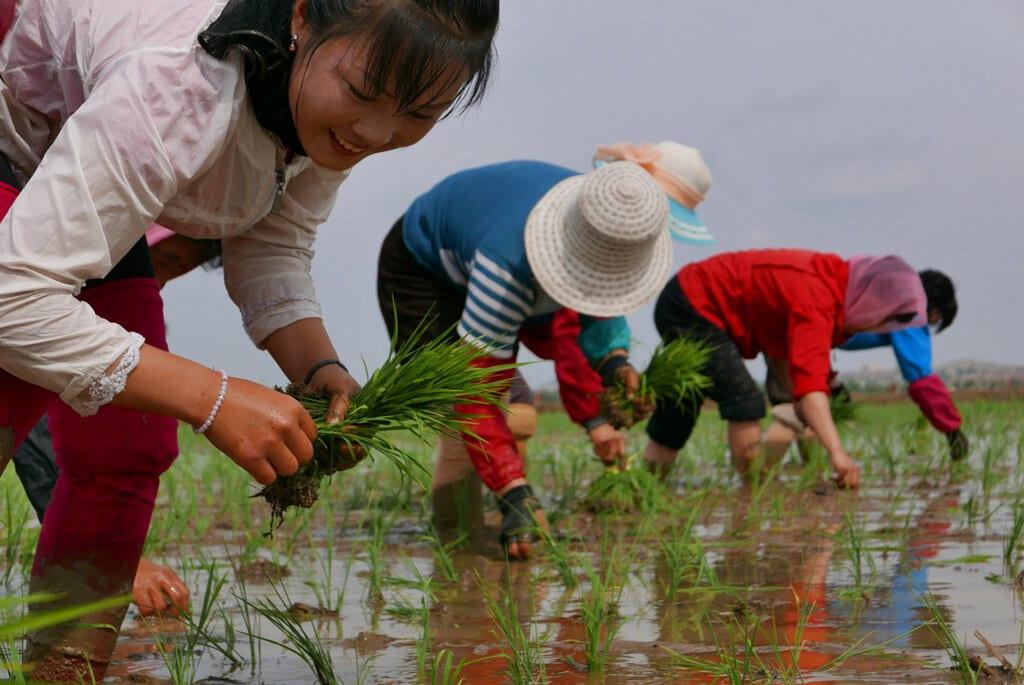 Η Βόρεια Κορέα απειλείται με νέα επισιτιστική κρίση
