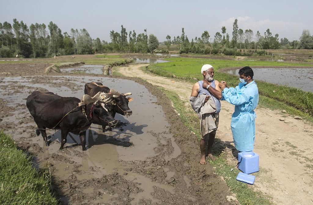 Ασία: Λαχνοί με κότες, αγελάδες και διαμερίσματα στους εμβολιασμένους!