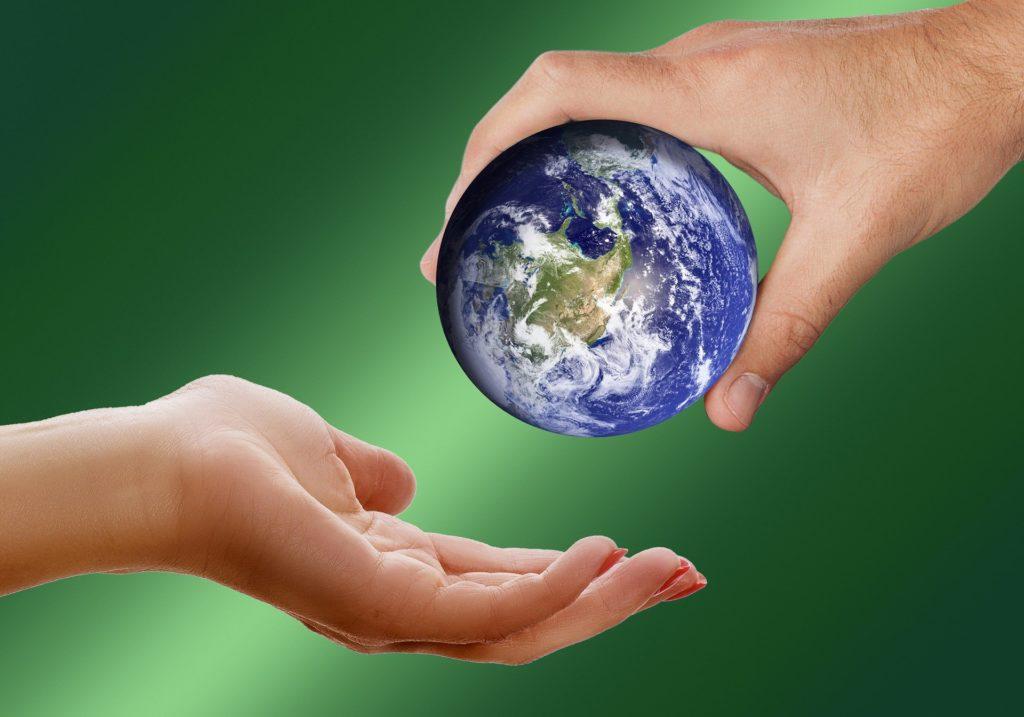 Παγκόσμια Ημέρα Περιβάλλοντος: Ένα εκατομμύριο είδη κινδυνεύουν με εξαφάνιση!