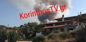 Μεγάλη πυρκαγιά στην Κορινθία – εκκενώνεται οικισμός