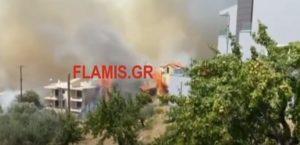 Πυρκαγιά στην Πάτρα: Εκκενώθηκε το Σούλι – Καίγονται σπίτια (Video)