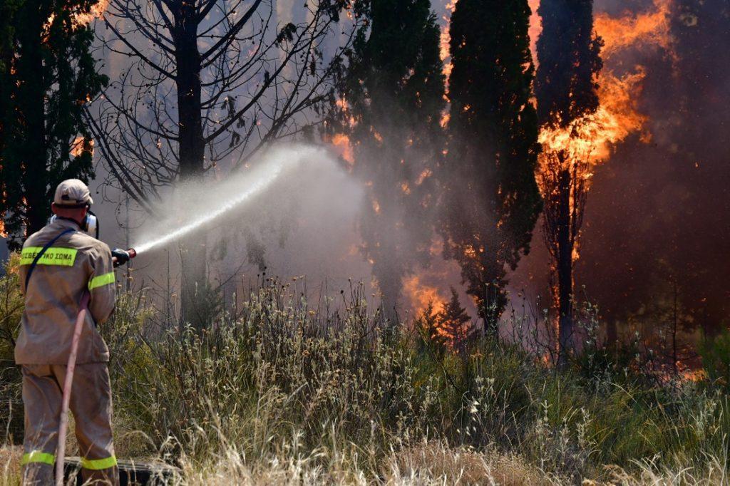 Πυρκαγιά στην Αχαΐα: Συνεχίζεται η μάχη με τις φλόγες στη Δροσιά – Εκκενώθηκαν κι άλλοι οικισμοί – Σε ύφεση η φωτιά στην Ελεκίστρα