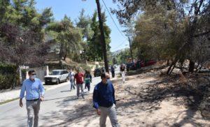 Αυτοψία ΣΥΡΙΖΑ στις πληγείσες από την πυρκαγιά περιοχές του Δήμου Διονύσου (Photos)