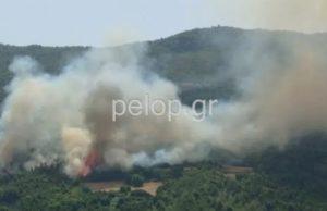 Φωτιά στην Πάτρα: Στην περιοχή Δροσιά – Εκκενώνεται ο οικισμός