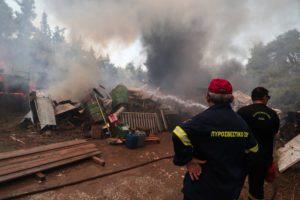 Ποινική δίωξη σε βάρος μελισσοκόμου για την πυρκαγιά στην Σταμάτα
