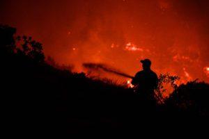 Ολονύχτια μάχη με τις φλόγες στη Μεσσηνία – Τεράστια καταστροφή σε σπίτια και καλλιέργειες