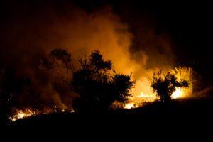 Μάχη με τις φλόγες και στη Μεσσηνία: Ενισχύονται οι πυροσβεστικές δυνάμεις