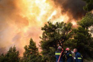 Γεροβασίλη για φωτιές: Η κλιματική κρίση είναι εδώ, η Κυβέρνηση;