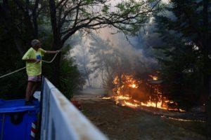 Πυρκαγιά στη Βαρυμπόμπη: Να γιατί δεν φταίνε τα πεύκα…»