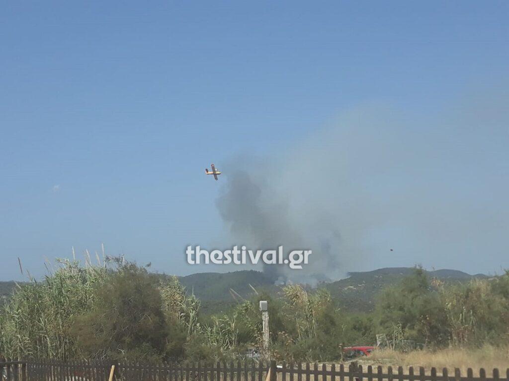 Φωτιά στην Τορώνη Χαλκιδικής (Video)