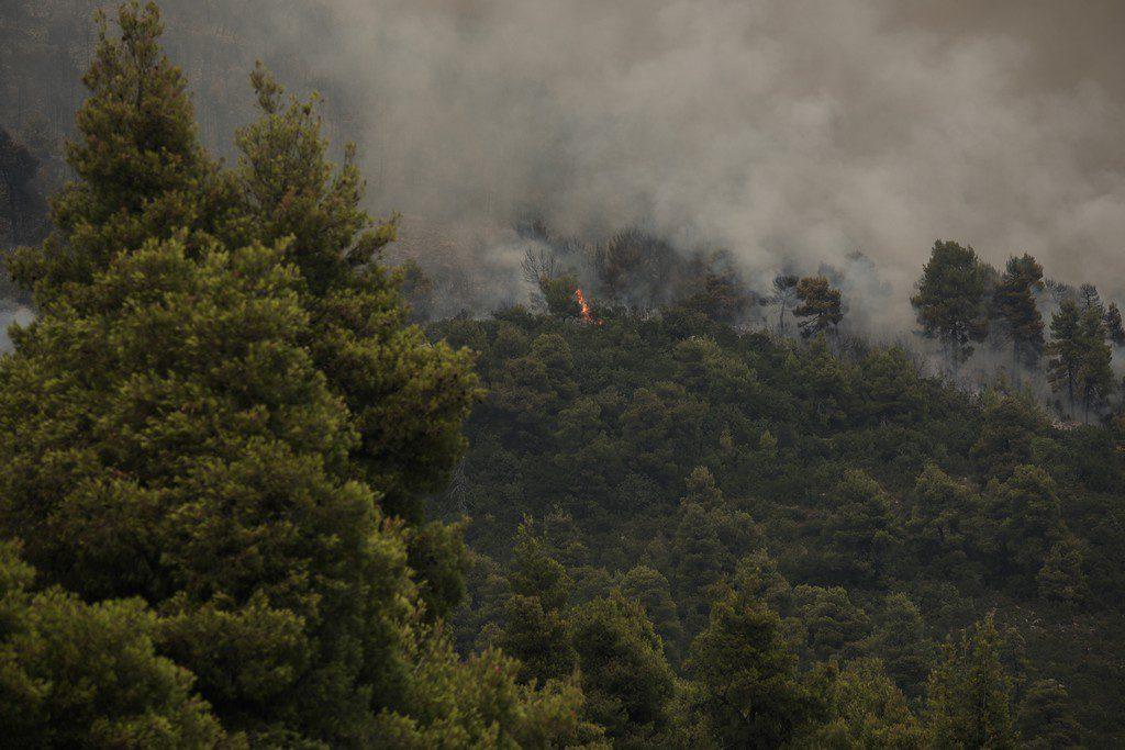 Μήνυμα του 112: Απαγορεύονται οι μετακινήσεις σε δάση και άλση μέχρι τη Δευτέρα