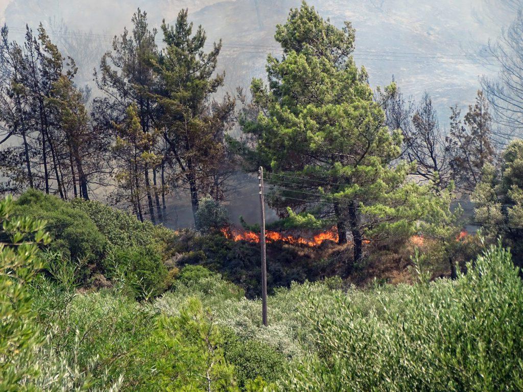 Φωτιά – Ρόδος: Τέθηκε υπό έλεγχο η αναζωπύρωση στην περιοχή Καλαμώνας