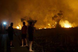 Πυρκαγιά στην Αρχαία Ολυμπία:  Προς Λάλα και Μιράκα η φωτιά – Γλίτωσε ο αρχαιολογικός χώρος
