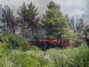 Ρόδος: Απαγόρευση κυκλοφορίας την Τετάρτη στις δασικές περιοχές από τις 2 το μεσημέρι