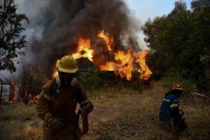 Θεσπρωτία: Πέρασε σε ελληνικό έδαφος φωτιά από την Αλβανία