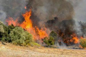 Μάχη με τις φλόγες και στη Μεσσηνία: Η φωτιά έχει περικυκλώσει το χωριό Καρνάσι (Συνεχής ενημέρωση)