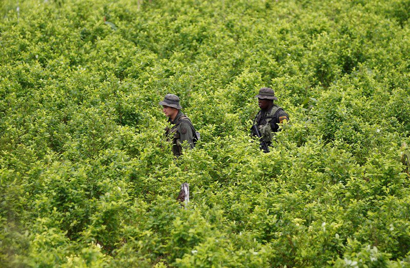 Iσημερινός: Κατασχέθηκαν 9,6 τόνοι κοκαΐνης, ποσότητα ρεκόρ