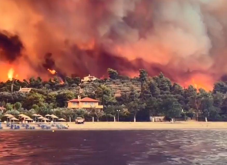 Συγκλονιστικό βίντεο από τη Λίμνη Ευβοίας: Οι φλόγες κατακαίνε το δάσος και φτάνουν στην παραλία (Video)