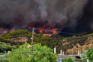 Πυρκαγιά Ροβιές Εύβοια: «Ανεβάσαμε στο καΐκι μας πάνω από 15 άτομα – Δεν μπορούσαμε να ανασάνουμε»