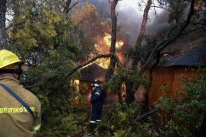 Σήμα κινδύνου Ζερεφού για μεγάλες φωτιές μετά τον καύσωνα