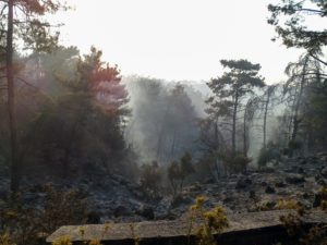 Ρόδος: Εκκενώνεται το χωριό Μαριτσά – Μάχη με τις αναζωπυρώσεις δίνουν πυροσβέστες και εθελοντές
