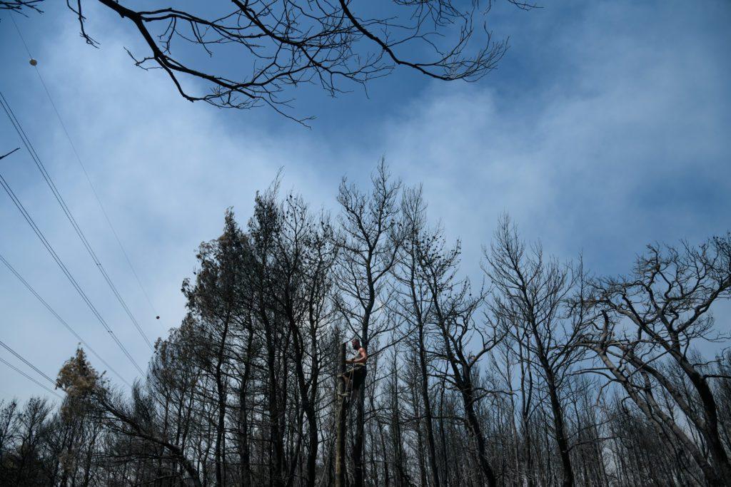 Μηνυτήρια αναφορά για ποινικές ευθύνες σχετικά με τις καταστροφικές φωτιές