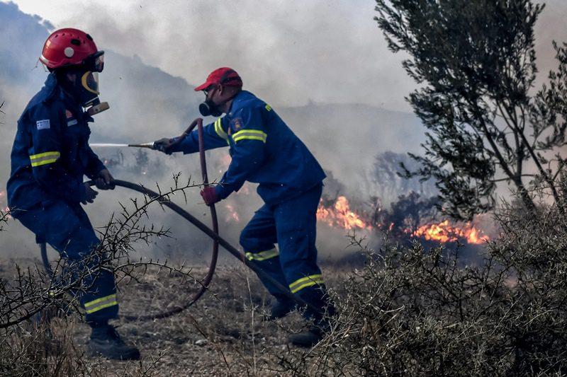 Hλεία: Πυρκαγιά σε αγροτοδασική έκταση στα Λεχαινά